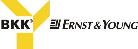BKK Ernst & Young